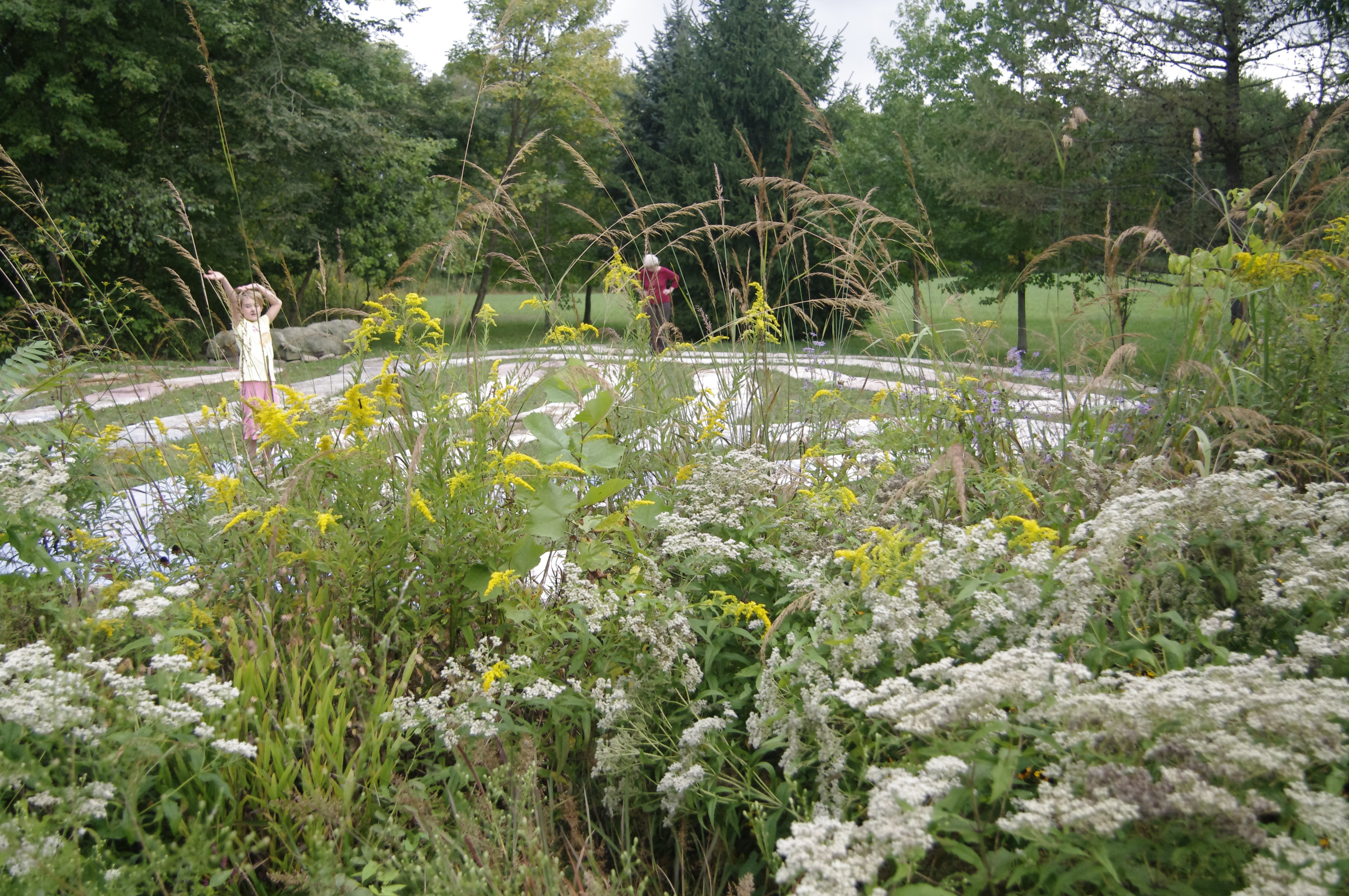 RiverWise Labyrinth native plant rain garden